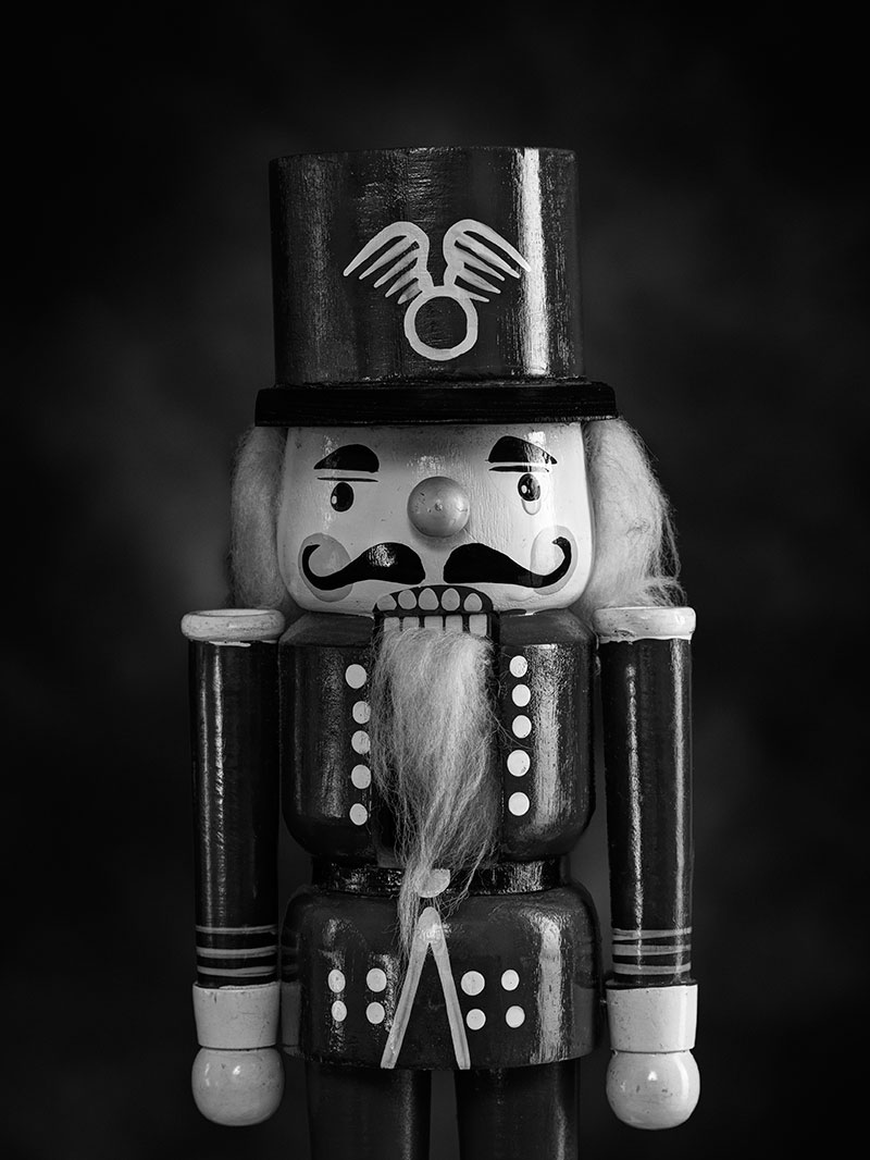 On the twenty-third of May 2012, the nutcrackers cried. That was the day my sister died.